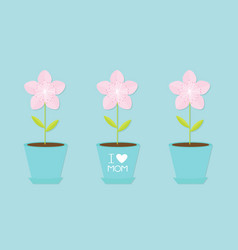 sakura flower pot set line japan blooming cherry vector image