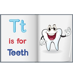A picture of tooth in book vector