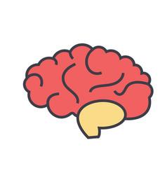 brain head brainstorm mind idea generation vector image vector image