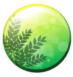 A green circle border vector image
