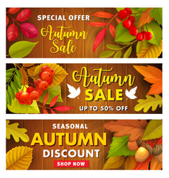 autumn sale promo banners with fall leaves vector image