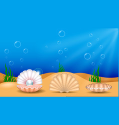 set realistic shiny pearls or various color vector image