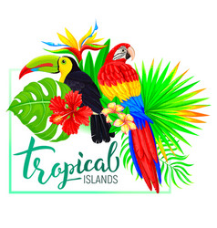 Tropical island composition with toucan parrot vector