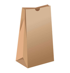 brown empty paper package for grocery products vector image