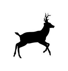 deer on a white background vector image