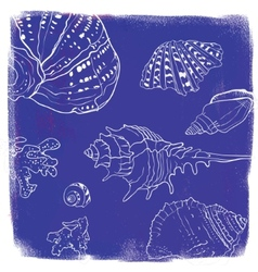 background with hand drawn seashells vector image vector image