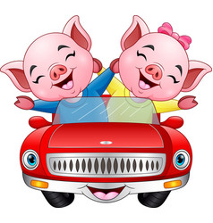 cartoon couples pig driving a car vector image