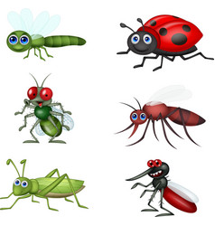 cartoon insect collection set vector image
