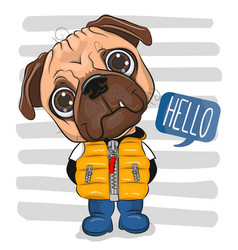 Cartoon pug dog in a vest and boots vector
