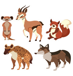 different types of wild animals on white vector image