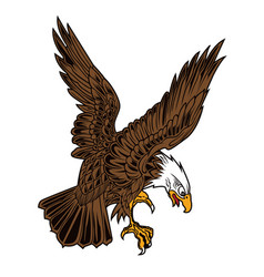 eagle wing fly hawk brown vector image
