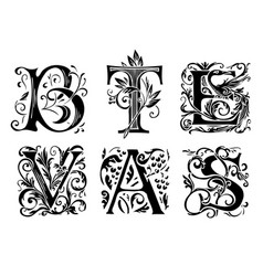 set decorative hand drawn initial letters vector image