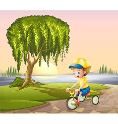 A little boy biking vector image