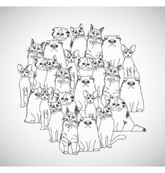 Group cats black and white isolate on white vector image