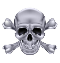 silver skull and crossbones on white background vector image vector image