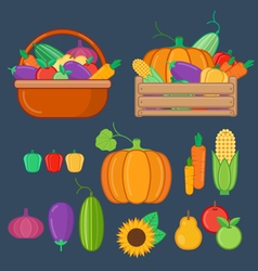 Organic fruits and vegetables vector image vector image