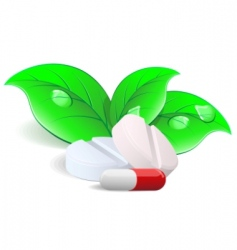 pills and capsules vector image vector image