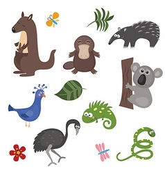 Animals of australia vector