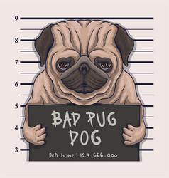 Bad pug dog crime vector