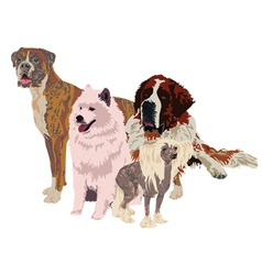 Group of dogs of different breeds vector