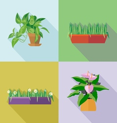 Home decorative flowers icons set Digital image vector image