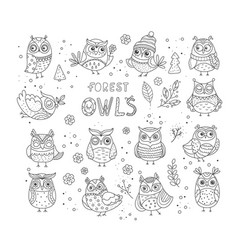 line doodle collection of black owls vector image