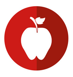 Sweet red apple vitamin nature shadow vector