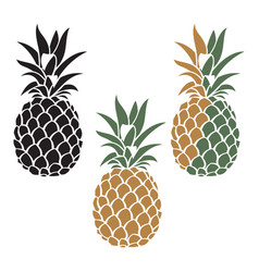 pineapple fruit set vector image vector image