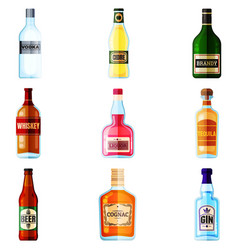 big set of different bottles of alcohol drinks vector image
