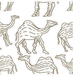 Camel pattern seamless design animal decoration vector