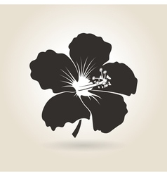 Icon Hibiscus Flower vector image