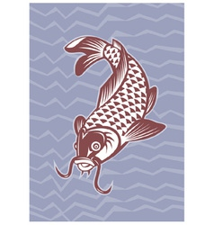 koi carp swimming down vector image