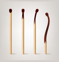 Realistic burnt match various stages vector