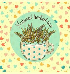 sketch card - natural herbal vector image
