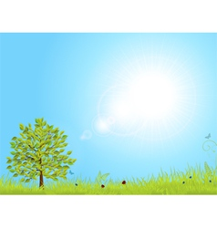 spring landscape with blue sky vector image