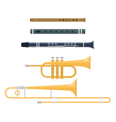 wind musical instruments vector image