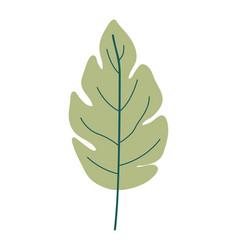 Green light color of lobed leaf plant vector