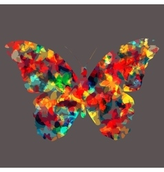 Butterfly Icon Silhouette vector image