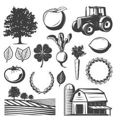 vintage natural elements set vector image vector image