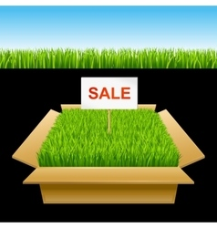 Open box with green grass Sale vector image vector image