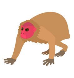 Bald wakari icon cartoon style vector