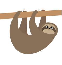 cute sloth hanging on tree branch icon cartoon vector image