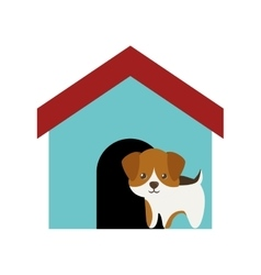 Dog canine young standing colored house vector