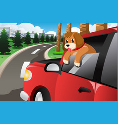 Dog sticking his face out of the car window vector