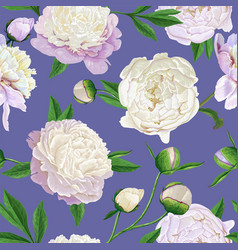 Floral seamless pattern with white peonies spring vector
