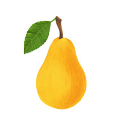 realistic yellow pear isolated on white background vector image