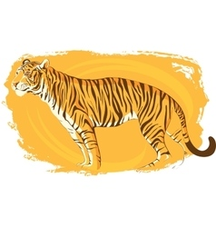 tiger on a bright yellow background zeal vector image