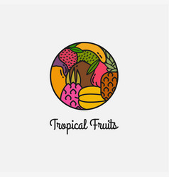 tropical fruits linear logo on white background vector image
