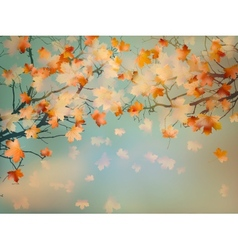 Abstract autumn yellow leaves background EPS 10 vector image
