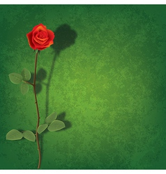 Abstract grunge green background with red rose and vector